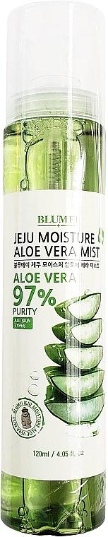 Nebbia per viso, corpo e capelli - Blumei Jeju Moisture Aloe Vera Mist