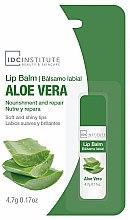 Profumi e cosmetici Balsamo labbra all'aloe vera - IDC Institute Lip Balm Aloe Vera