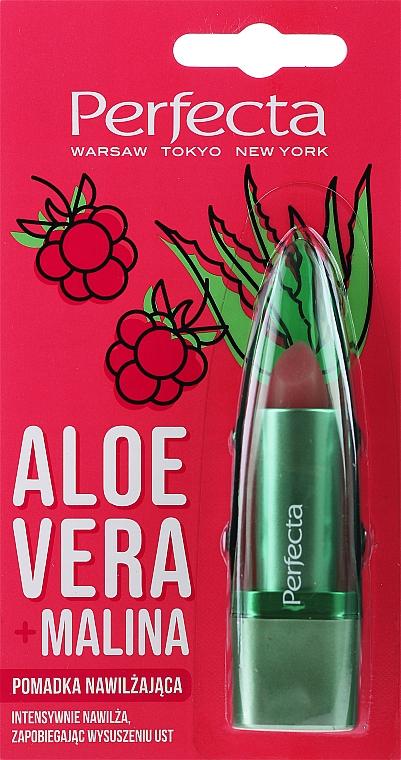"""Balsamo labbr """"Aloe Vera e Lampone"""" - Perfecta Aloe Vera + Raspberry"""