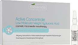Concentrato attivo a basso peso molecolare di acido ialuronico - Bielenda Professional Meso Med Program Active Concentrate With Low Molecular Weight Hyaluronic Acid — foto N1