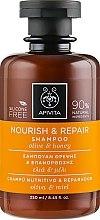 Profumi e cosmetici Shampoo nutriente rivitalizzante con olio d'oliva e miele - Apivita Nourish And Repair Shampoo With Olive And Honey