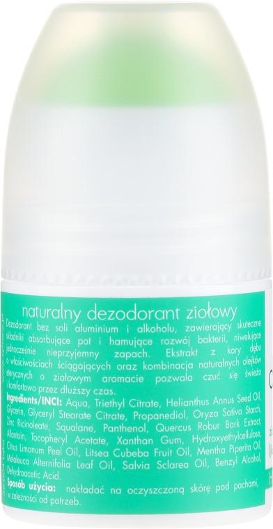 Deodorante alle erbe naturali - Sylveco — foto N2