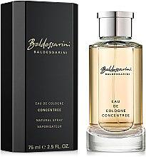 Profumi e cosmetici Baldessarini Concentree - Colonia (concentrato)