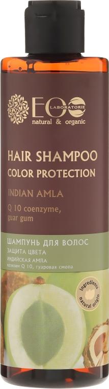 Shampoo per capelli colorati - Eco Laboratorie Color Protection Hair Shampoo