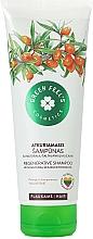 Profumi e cosmetici Shampoo con olio di olivello spinoso - Green Feel's Regerative Shampoo