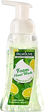 Profumi e cosmetici Sapone liquido - Palmolive Magic Softness Foaming Handwash Lime & Mint