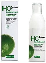 Profumi e cosmetici Shampoo per capelli grassi - Specchiasol HC+ Shampoo For Oily Hair Sebum Regulatory