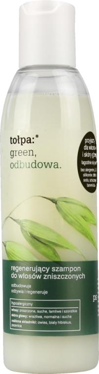 Shampoo per capelli - Tolpa Green Reconstruction Damaged Hair Shampoo — foto N3
