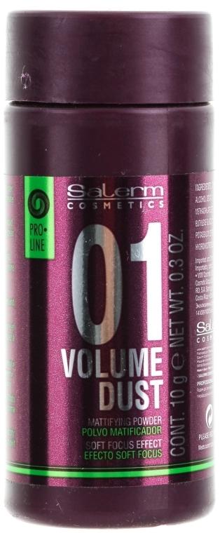 Polvere per dare volume e densità ai capelli - Salerm Pro Line Volume Dust 01 Mattifying Powder