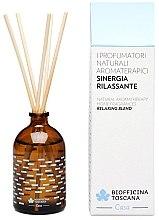 "Profumi e cosmetici Diffusore per casa ""Miscela rilassante"" - Biofficina Toscana Biofficina Aromatherapy Home Fragrances Relaxing Blend"