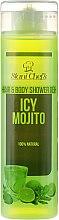 Profumi e cosmetici Gel doccia per capelli e corpo - Hristina Stani Chef's Hair And Body Shower Gel Icy Mojito