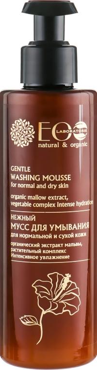 """Schiuma viso detergente """"Pulizia delicata"""" - Eco Laboratorie Washing Mousse"""