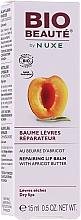 Profumi e cosmetici Balsamo labbra all'olio di albicocca - Nuxe Bio Beaute Lip Balm With Apricot Butter