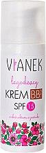 Profumi e cosmetici Crema BB lenitiva - Vianek BB Cream SPF15