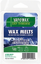 Profumi e cosmetici Cera per lampada aromatica - Airpure VapoWax Wax Melts