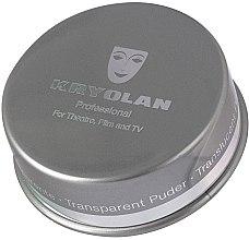 Profumi e cosmetici Cipria transparente per fissare il trucco - Kryolan Translucent Powder