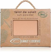 Profumi e cosmetici Cipria compatta riflettente - Couleur Caramel Sun Powder