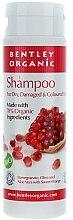 Profumi e cosmetici Shampoo per capelli secchi e danneggiati - Bentley Organic Shampoo For Dry & Damaged Hair