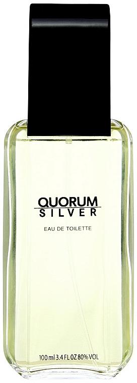 Antonio Puig Quorum Silver - Eau de toilette  — foto N1