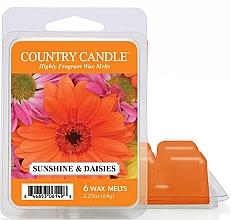 Profumi e cosmetici Cera per lampada aromatica - Country Candle Sunshine & Daisies Wax Melts